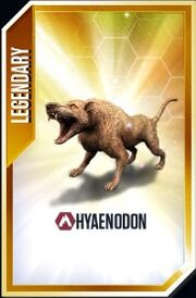 Hyaenodon-Card