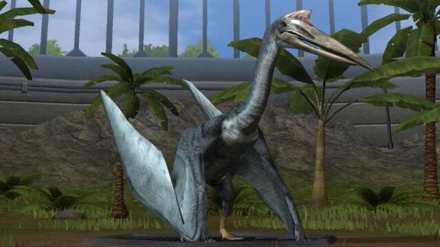 File:Quetzalcoatlus-0.jpg