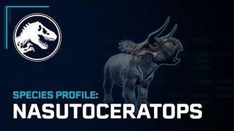 Species Profile - Nasutoceratops-0