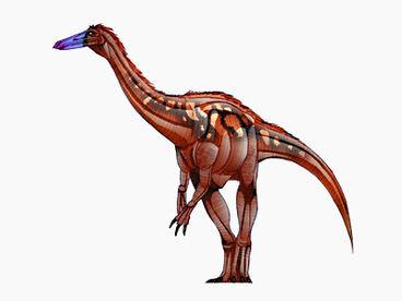 Dc card Segnosaurus big