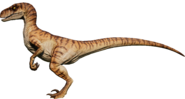 Raptor97M