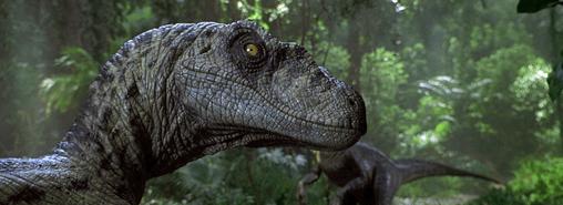 JP3 Raptor1