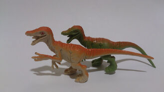 Raptor 11530750334 aafab63440 b