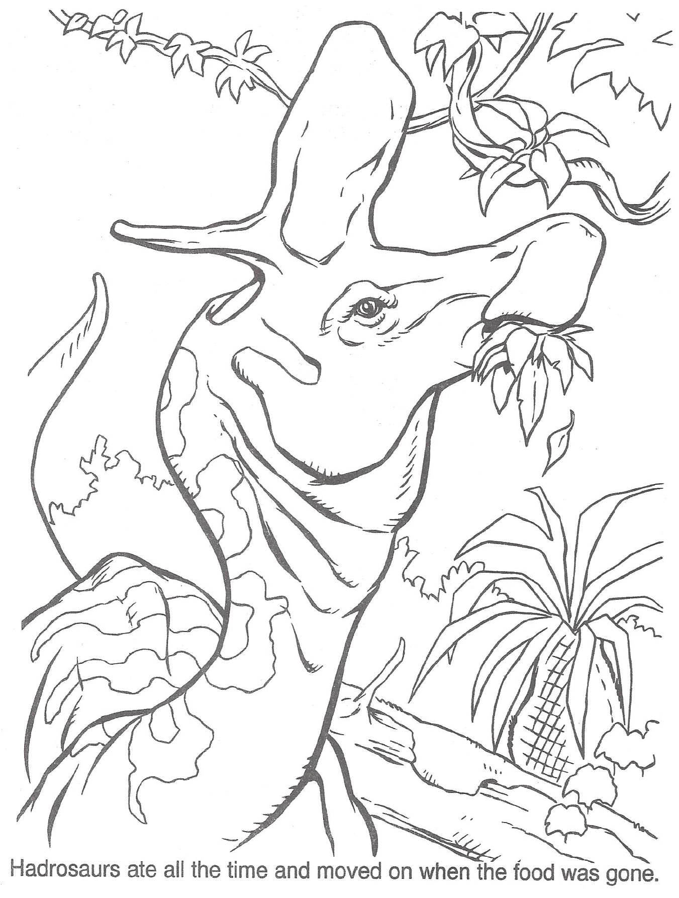 image tlw coloring page 1 png jurassic park wiki fandom