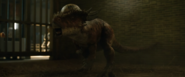 Stygimoloch Full