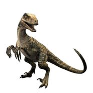 Velociraptor-jurassic-world-the-game