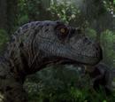 Velociraptor sornaensis Hembra Alpha
