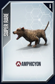 Amphicyon New Card