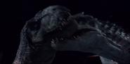 Indominus bites Rexy