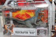 Blue FK Toy