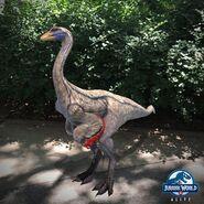 OrnithomimusAR