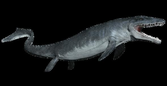 Mosasaurus-detail-header