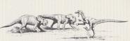 Raptor vs protoceratops Image-8