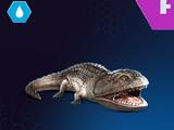 Koolasaurus