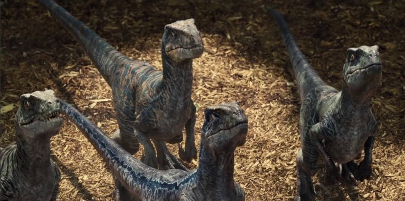 Fan Fiction Friday Some Jurassic Park Guys And A Velociraptor In Root Her The Robot S Voice
