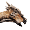 Dracorex Icon Evolution