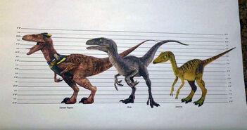 Jurassic-Live-Tour-Raptor-Troodon-Size-Chart