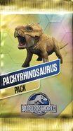 Pachyrhinosaurus Pack