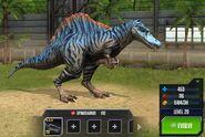 Spinosaurus 1S