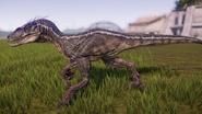 Raptor01M