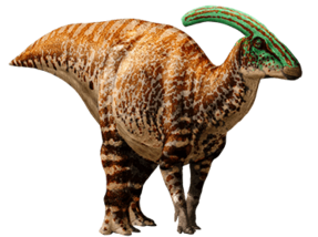 Parasaurolophus-info-graphic