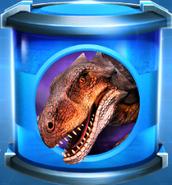 Ankylocodon Rare Incubator