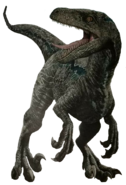 Unused velociraptor render by kingrexy-dci8cb0