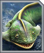 Diplocaulus card