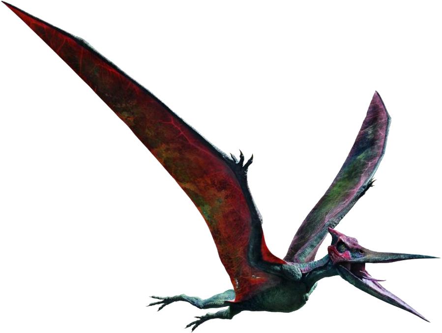 Image - JWFK Pteranodon (edit) V2.png | Jurassic Park wiki ...