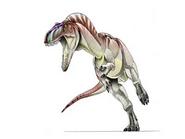 JPI-Nanotyrannus