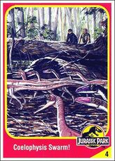 Coelophysis collector card