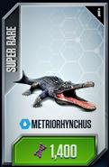 Metriorhynchus Card