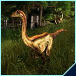 Pre-order-dino-skin archaeornithomimus