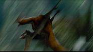 Dimorphodon Divebombing