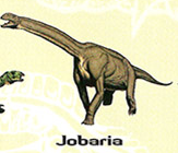 Jobaria