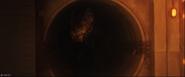 Sewer theropod