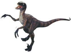 Vmk-a346-raptor
