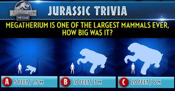 Megatherium Trivia