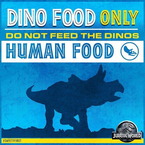 File:Dinofoodonly.jpg