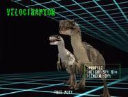 Raptor JPIIIAmf