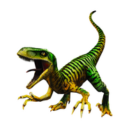 Raptor jwtg