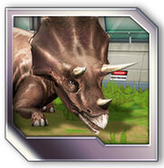 Uploads-20160428T1637Z 3bd21c6e33a534d5c50e9d1bcc5aef52-JPB-Profiles-Triceratops