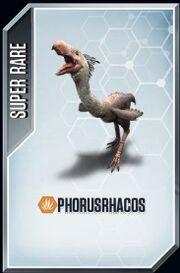 Phorusrhacos card
