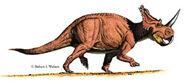 Centrosaur