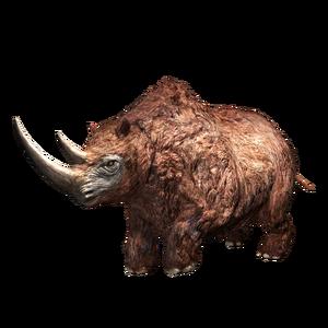 JWA PressKit Woolly Rhino