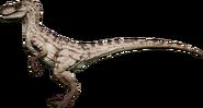 Raptor01F