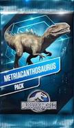 Metriacanthosaurus Pack