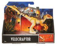Legacyraptor