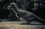 Daspletosaurus skrepnick