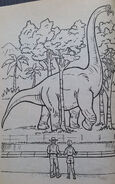 Jurassic Park A Coloring Book 1